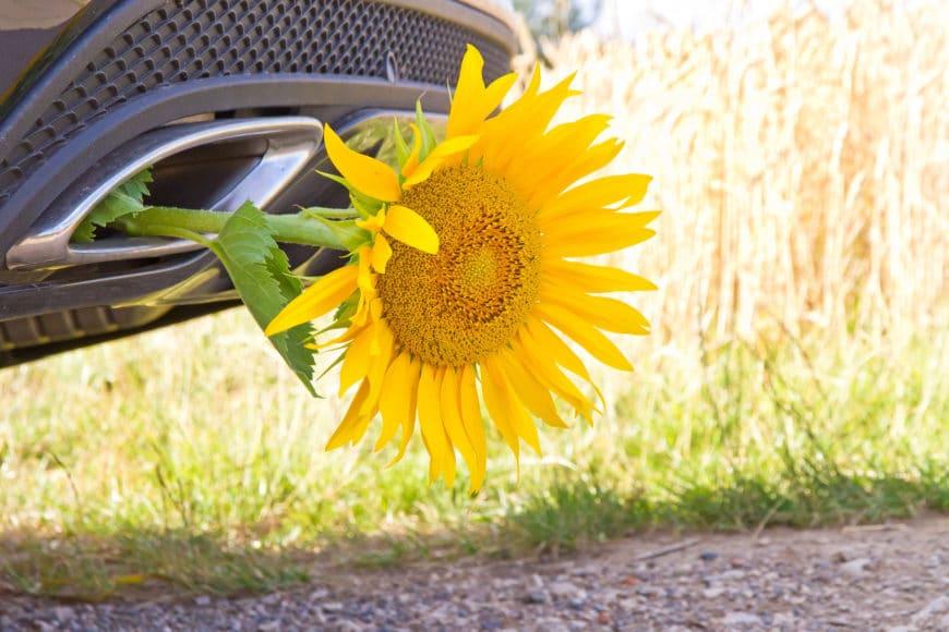 Le bioéthanol E85, avantages et inconvénients